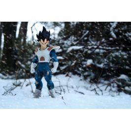 Dragon Ball Z - Vegeta - plakat Fototapety