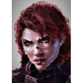 POLYamory - Jane Shepard, Mass Effect - plakat Fototapety