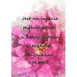 Dłużnik - plakat Fototapety
