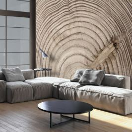 Fototapeta - Słój drewna Fototapety