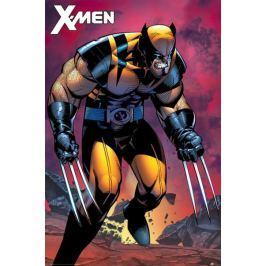 X-Men Wolverine - plakat Fototapety