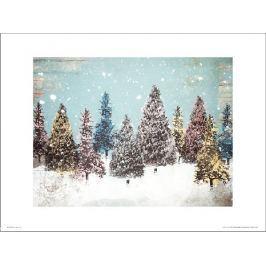 Christmas Trees - plakat premium Fototapety