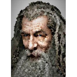 POLYamory - Gandalf, Władca Pierścieni - plakat Fototapety