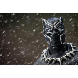 Black Panther T-Challa - plakat