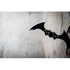 Batman Arkham City - Batarang - plakat