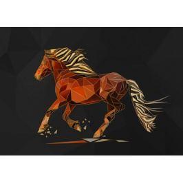 Koń złoty - plakat