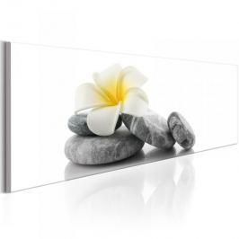 Obraz - Biały Lotos