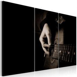 Obraz - Gitarzysta