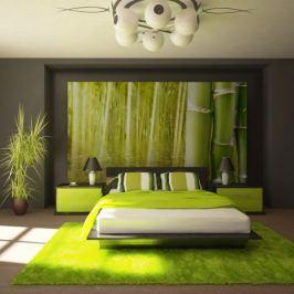 Fototapeta - Egzotyczny klimat - bambus