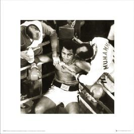 Muhammad Ali Ring Corner - plakat premium