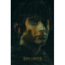 Władca Pierścieni - Drużyna pierścienia - plakat premium