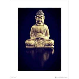 Buddha Gold Full Body - plakat premium
