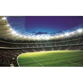Fototapeta Stadion Boisko 323VE