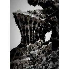 POLYamory - Havel, Dark Souls - plakat