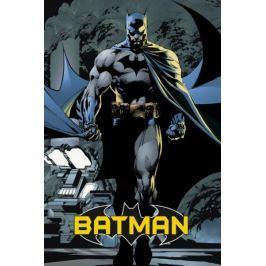 Batman comic - plakat
