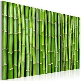 Obraz - Ściana z bambusa