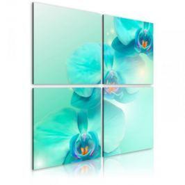 Obraz - Błękit orchidei