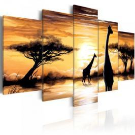 Obraz - Dzika Afryka