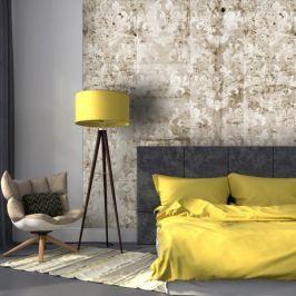 Fototapeta - Beton - Motyw barokowy