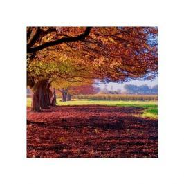 Kolorowy Krajobraz - plakat premium