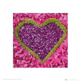 Serce - Madalene's Hearts - plakat premium