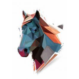 Koń - plakat