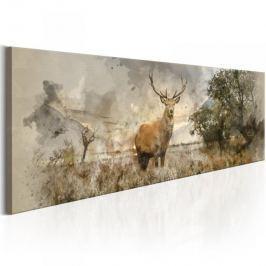 Obraz - Akwarelowy jeleń