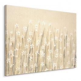 Field Of Starry White Flowers - Obraz na płótnie