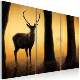 Obraz - Strażnik lasu