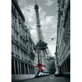 Paryż jumping plakat 3D