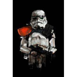 Gwiezdne Wojny Szturmowiec Dowódca - plakat premium