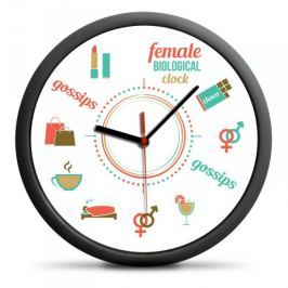 Zegar Biologiczny Kobiety (EN)