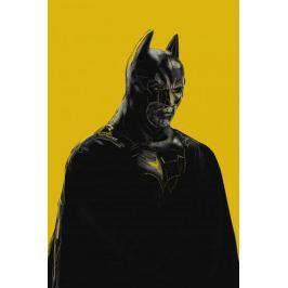Batman - plakat premium