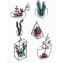 Botaniczne I - plakat