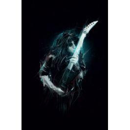 Janson Becker Gitarzysta - plakat premium