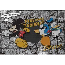 Fototapeta MYSZKA MIKI Mickey Mouse 531VE