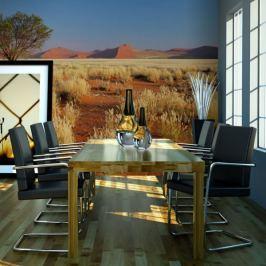 Fototapeta - Pustynny krajobraz, Namibia