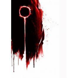 Dark Souls - The Dark Sign - plakat