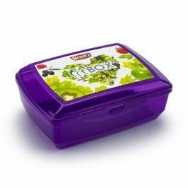 Śniadaniówka / Pojemnik na kanapki dwukomorowy plastikowy BRANQ FIT BOX FIOLETOWA