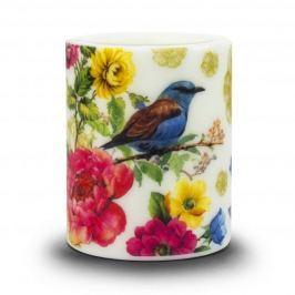 Świeca ozdobna woskowa PAW BIRD OF PARADISE BIAŁA