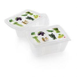 Pojemniki na żywność plastikowe SNIPS EASY LUNCH STRADA 2 szt.