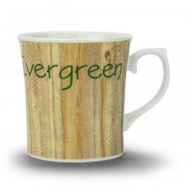 Kubek porcelanowy HERMES EVER GREEN 450 ml