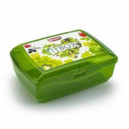 Śniadaniówka / Pojemnik na kanapki dwukomorowy plastikowy z wkładem chłodzącym BRANQ FITBOX ZIELONA