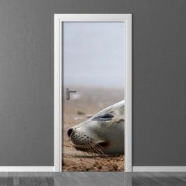Fototapeta na drzwi foka FP 2748 D