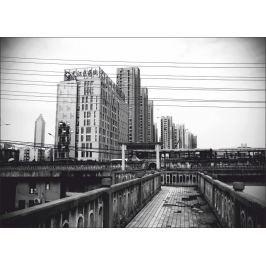 obraz miasto P516