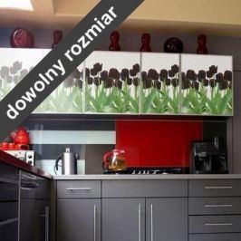 fototapeta czarne tulipany 268